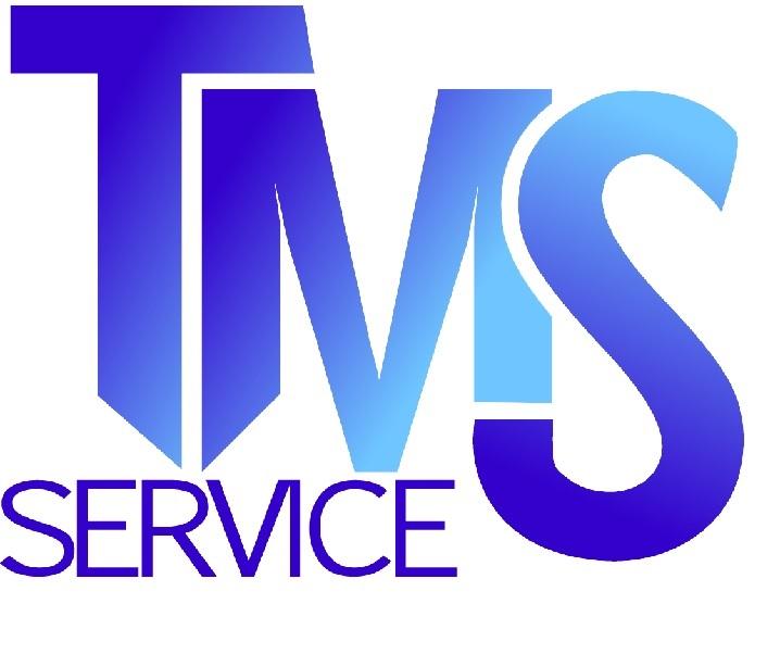 TMS Service