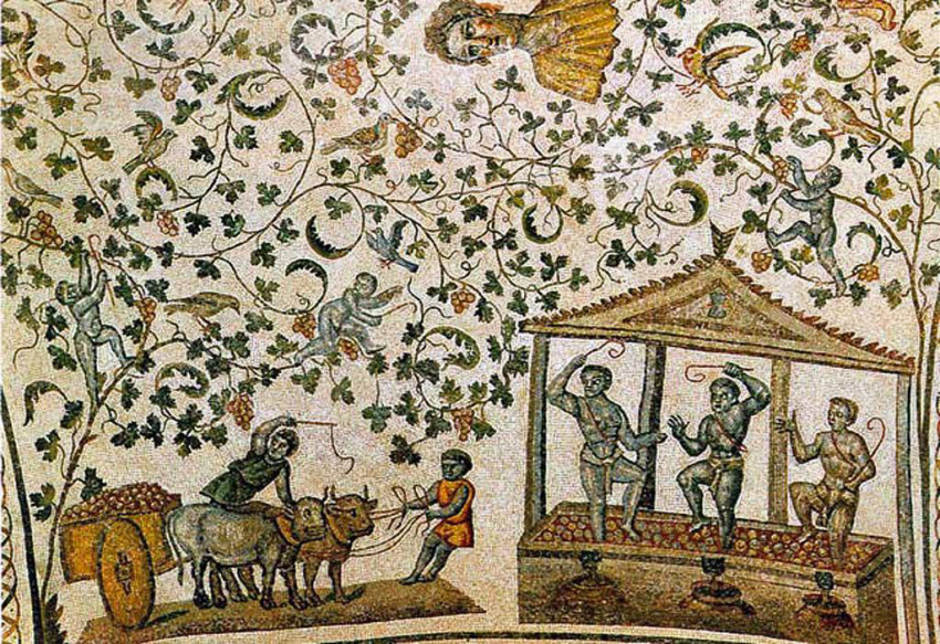 maf museo archeologico forlimpopoli